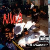 Classic Album: NWA - Efyl4zaggin